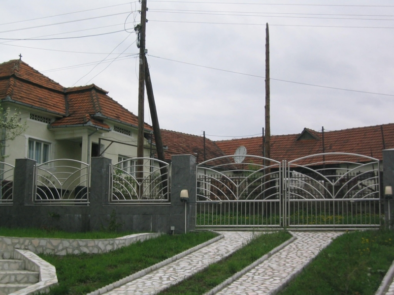 Poarta si gard din otel lustruit 4