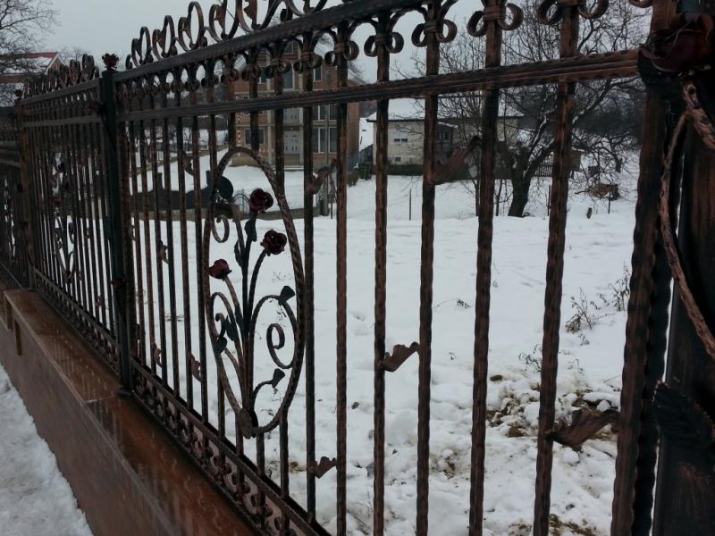 Poarta si gard din otel vopsit cu elemente de fier forjat